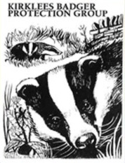 Kirklees Badger Protection Group