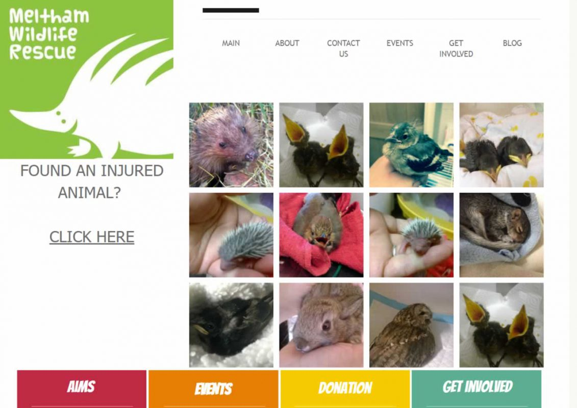 Meltham Wildlife Rescue